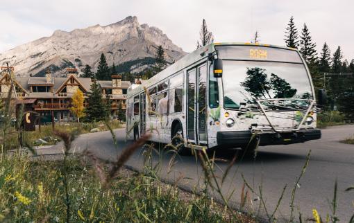 Explore the Park - Damian Blunt